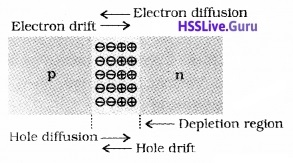 Plus Two Physics Notes Chapter 14 Semiconductor Electronics Materials, Devices and Simple Circuits - 8