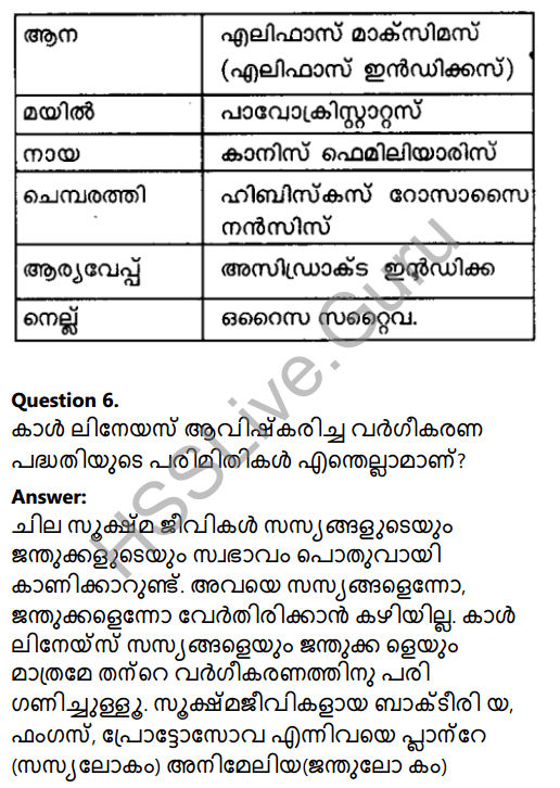 Kerala Syllabus 8th Standard Basic Science Solutions Chapter 12 Why Classification in Malayalam 12