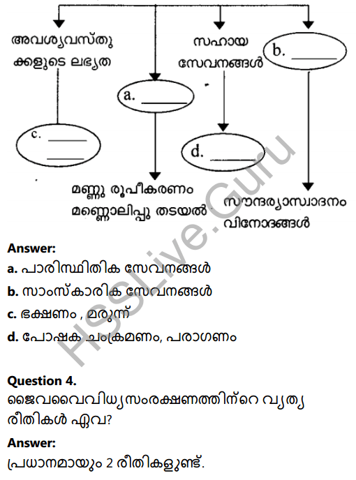 Kerala Syllabus 8th Standard Basic Science Solutions Chapter 13 Diversity for Sustenance in Malayalam 12