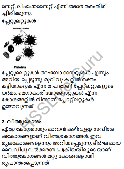 Kerala Syllabus 8th Standard Basic Science Solutions Chapter 2 Cell Clusters in Malayalam 11