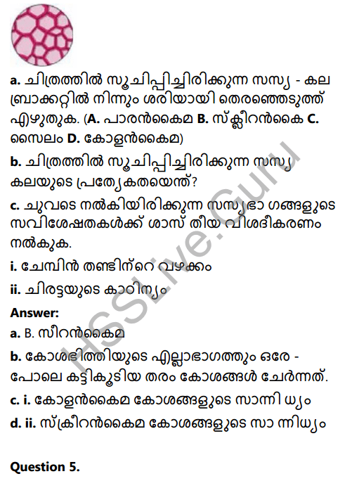 Kerala Syllabus 8th Standard Basic Science Solutions Chapter 2 Cell Clusters in Malayalam 17