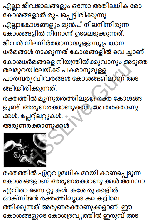 Kerala Syllabus 8th Standard Basic Science Solutions Chapter 2 Cell Clusters in Malayalam 9