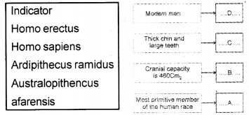 Kerala Syllabus 10th Standard Biology Solutions Chapter 8 The Paths Traversed by Life - 21