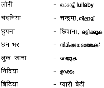 Plus Two Hind Textbook Answers Unit 2 Chapter 2 मेरे लाल (पद) 14