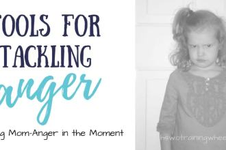 How do you manage mom-anger in the moment? Follow me to the HEAV blog and let's talk about some ideas and tips for handling those mad-mama-moments!
