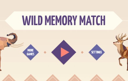 Wild Memory Match