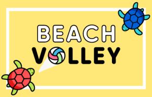 beach volleyball game banner