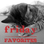 Friday Favorites - Sleepy Cat