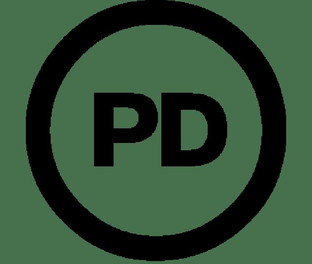 About Public Domain Copyright