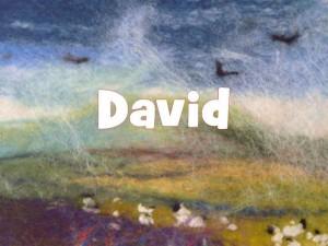 David series