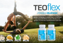 TeoFlex by Teoma