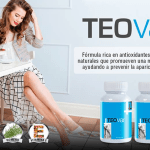 TeoVar by Teoma