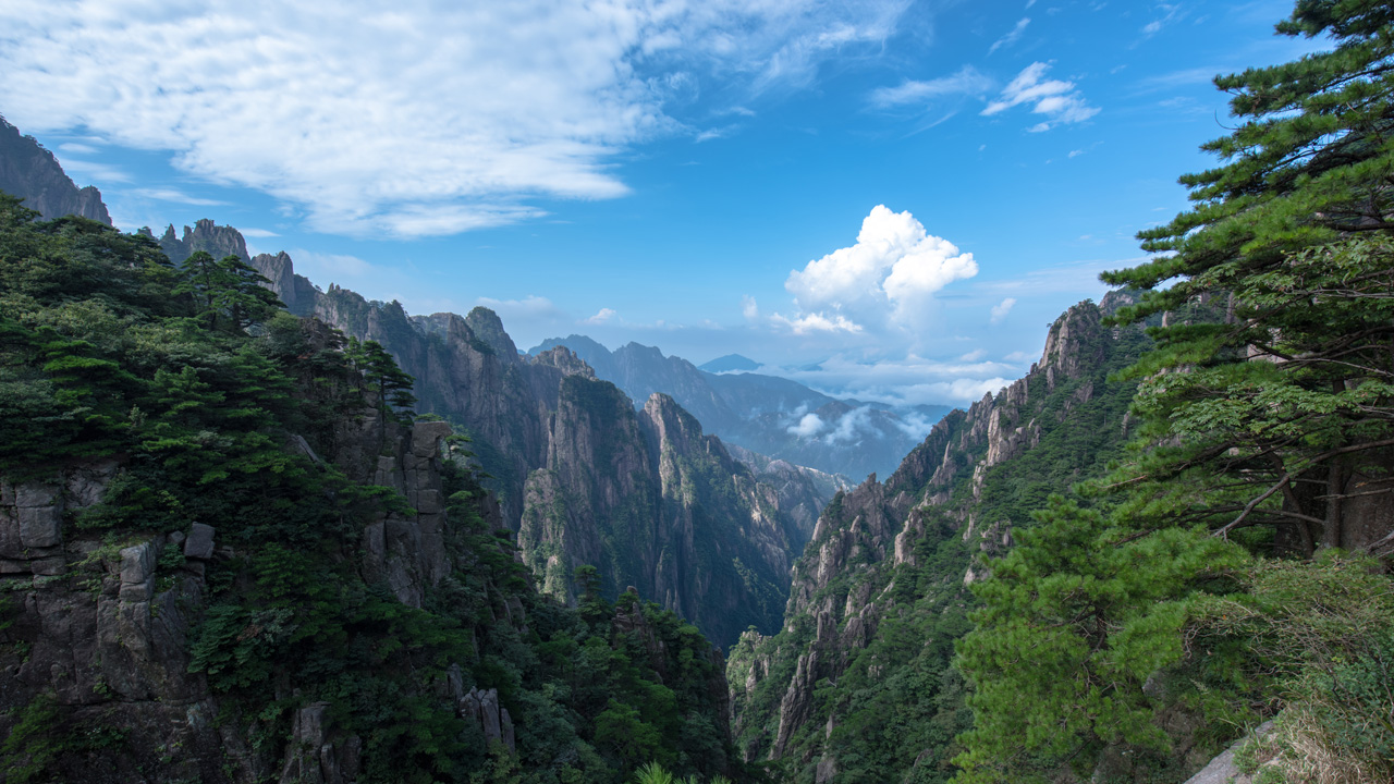 Yellow Mountains Photography