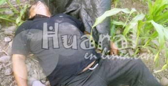 En medio de los maizales fue hallado el infortunado taxista hace dos semanas.