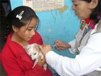 Se vacunó a canes del lugar.