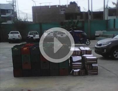 En procesadora recuperan duraznos robados a agricultores de Palpa Huaral.