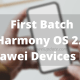 Hongmeng (Harmony) OS 2.0 update - First batch