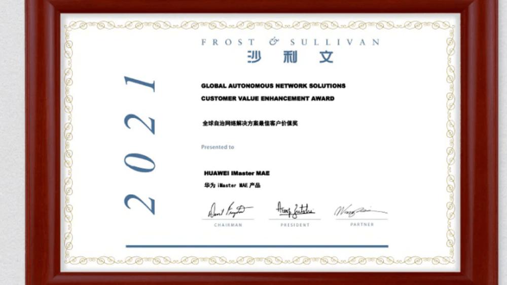 Frost and Sullivan's 2021 Global Customer Value Enhancement Award