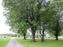 St-Hughes Cemetery