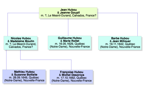 arbre hubou