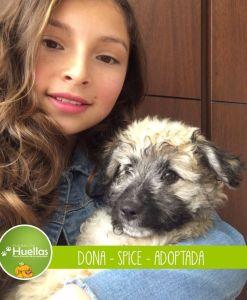 dona_spice_003