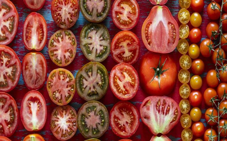variedades de tomate para cultivo en huerto