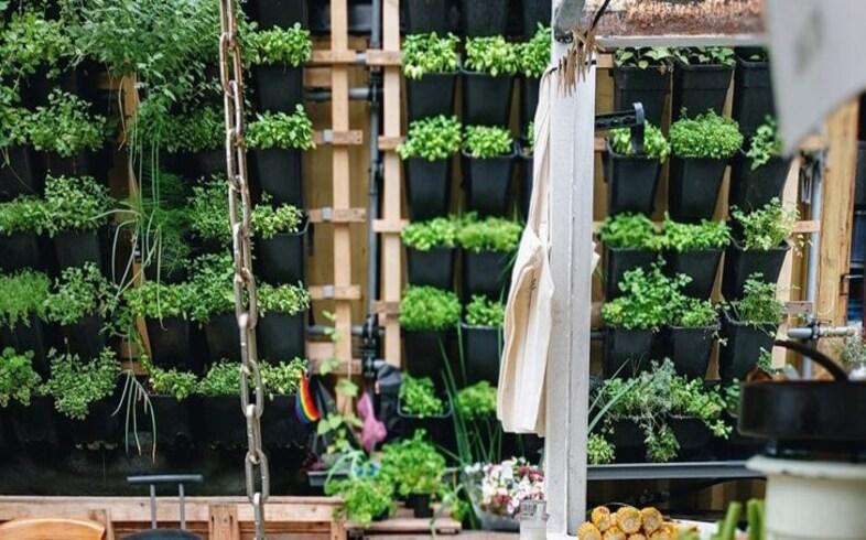 jardin vertical ventajas