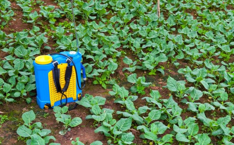 tipos fertilizante para huerto