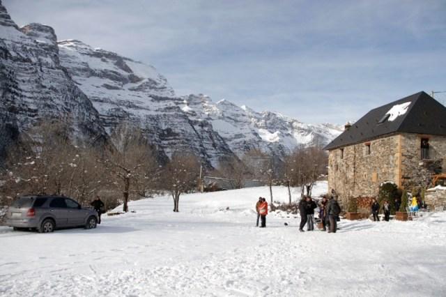localizacion: Palmeras en la Nieve