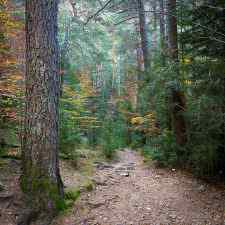 Camino de Turieto de Nacho Garcés en Flickr