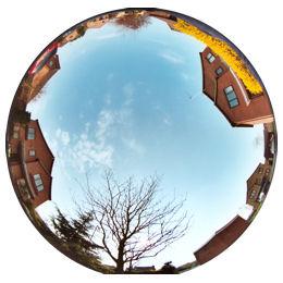 Fisheye Lens Looking Verticaly