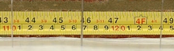 Measuring Tape and Needles