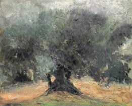 "<h5>L'oliveraie-etude</h5><p>Oil on Canvas, 25½"" x 31¾""</p>"