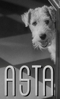 200px-Asta_in_Another_Thin_Man_trailer