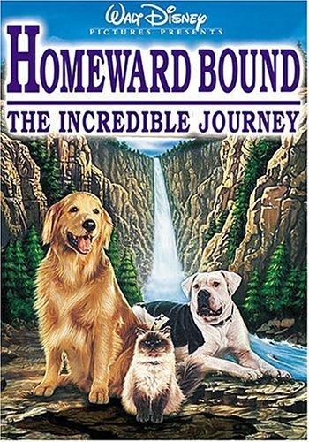 homward bound