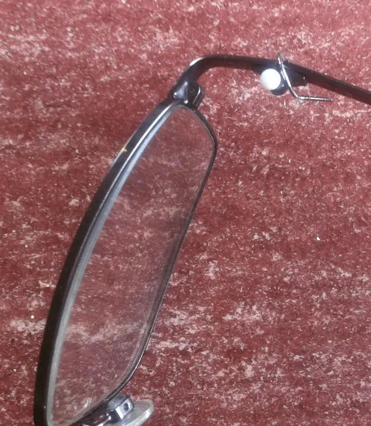 brillenpoot