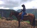 ハワイ島フォト日記 滝めぐり!極めつけは馬で行ったヒイラベ!!!
