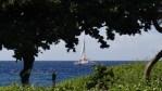 ハワイ島フォト日記 青い空と青い海 KONA最高!!