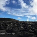 ハワイ島フォト日記 現在の島一番の観光はこれだよね!