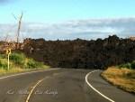 ハワイ島フォト日記 137号線の美を求めて。。。