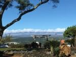 ハワイ島フォト日記 リリウオカラニ公園は観光客でいっぱいだよ