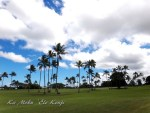 ハワイ島フォト日記 初心者大歓迎!ハワイでGOLFしよう!!!