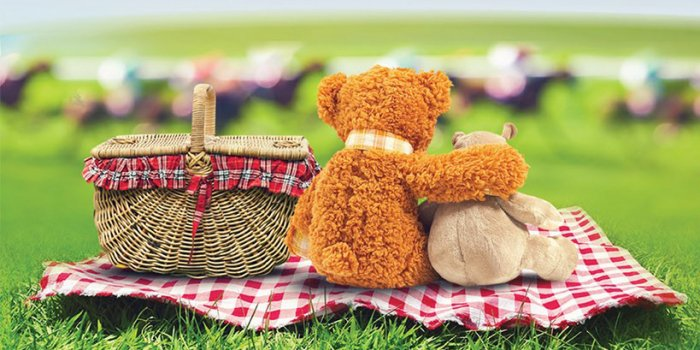 Hulland Hippos – Teddy Bear's Picnic