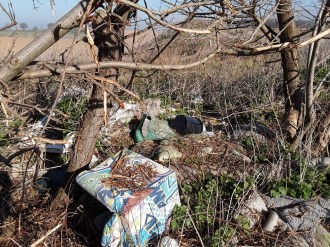 Rubbish dumped in the bushes