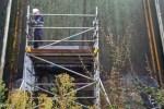 Banksy scaffolding