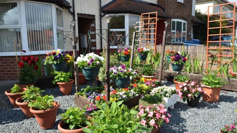 A front garden