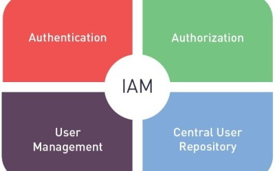 Defining IAM and IGA