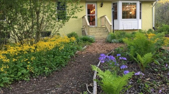 Virtual Habitat Tour My Humane Garden Humane Gardener