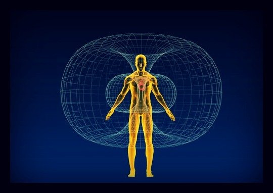 Electromagnetic field of the human body