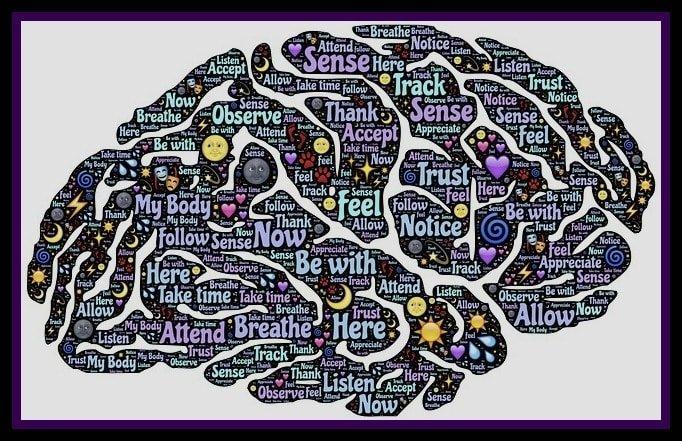 Brain Consciousness Human